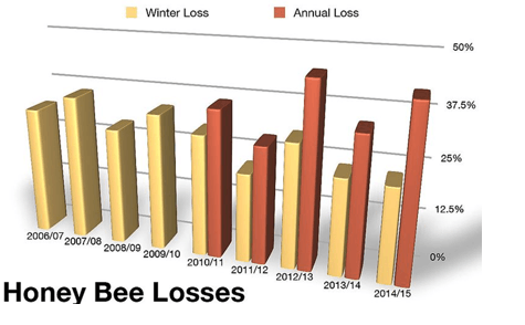 Image of Honey Bee Losses