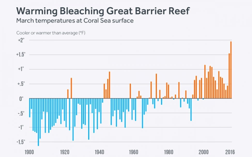 Image of Warmer Temperatures at Great Barrier Reef