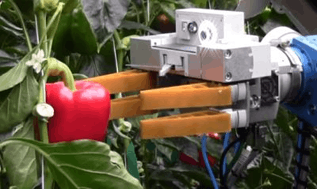 Image of Agricultural Robot