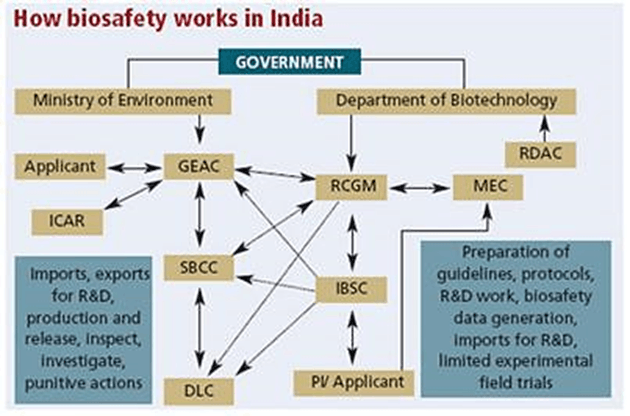 Image of How biosafety works in India