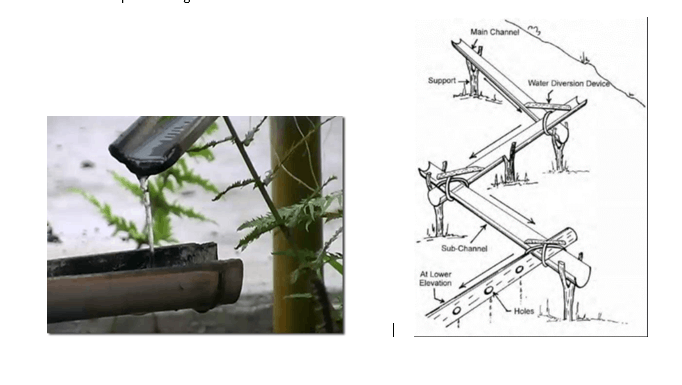 Bamboo Drip Irrgation System For Geography Image