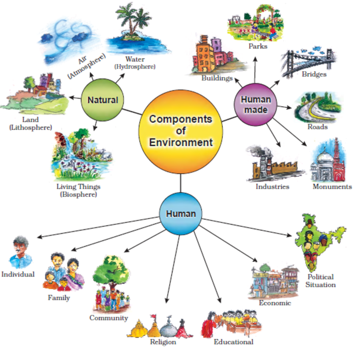 Image of Components of Environment