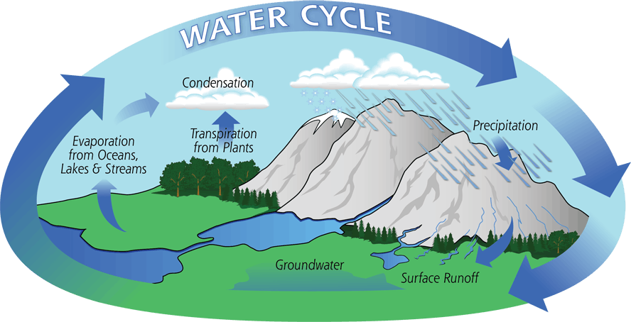 Diagram of the water cycle showing evaporation, condensation, and precipitation