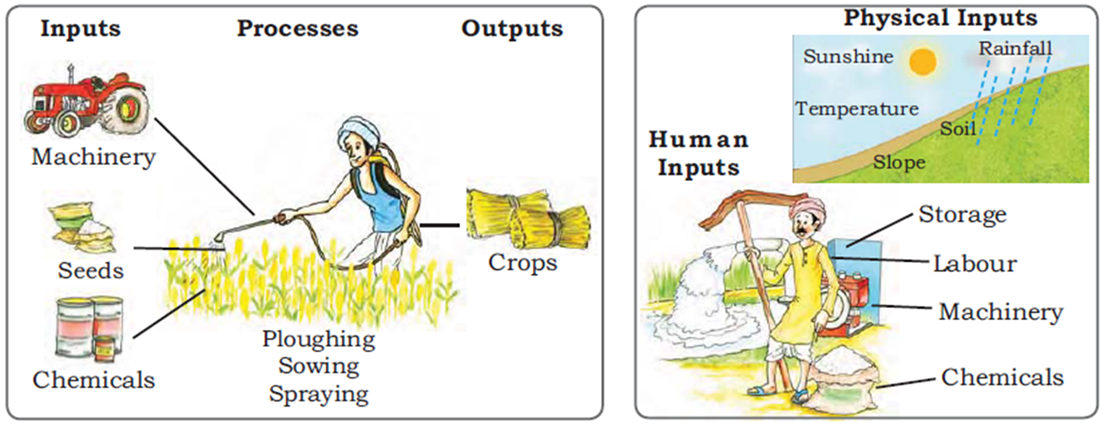 Image of Processes of Inputs And Outputs