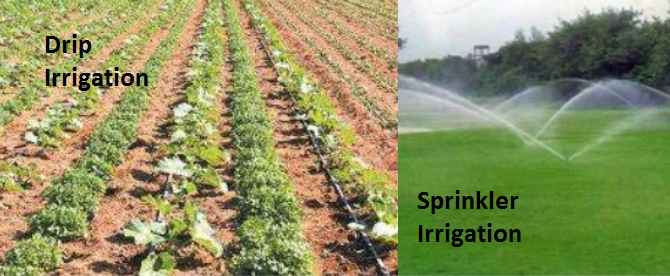 Image of drip irrigation and sprinkler irrigation