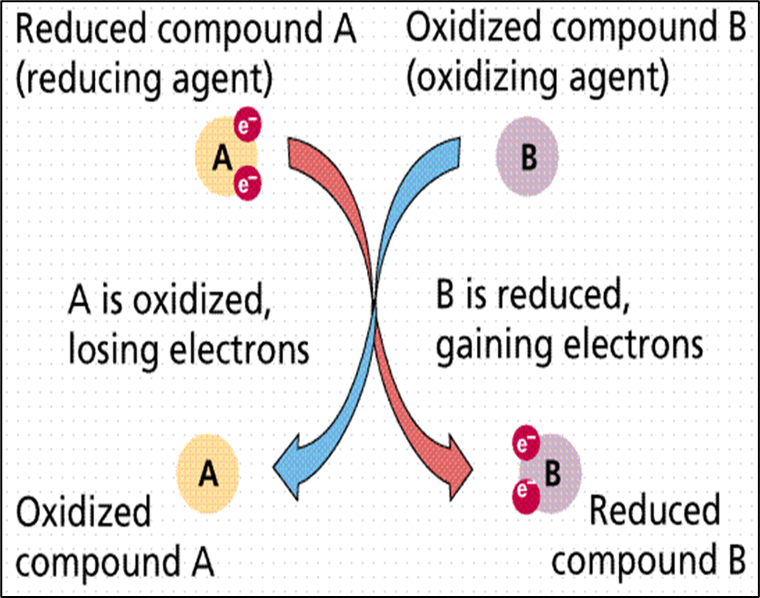 reductant transfers electrons
