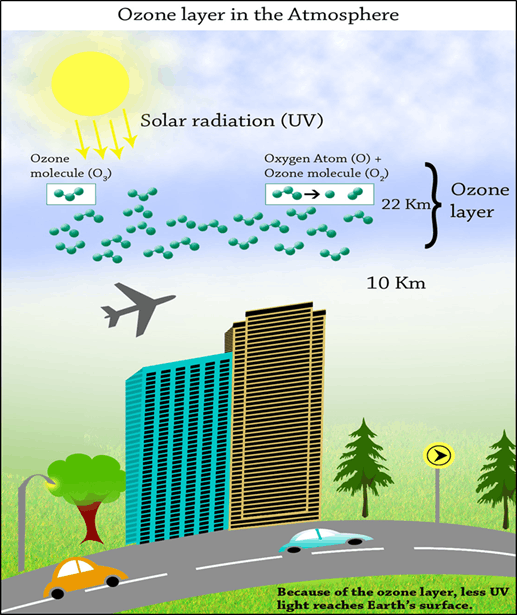 Ozone Layer in the Atmosphere