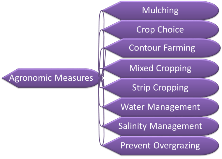 Image of Agronomic Measures