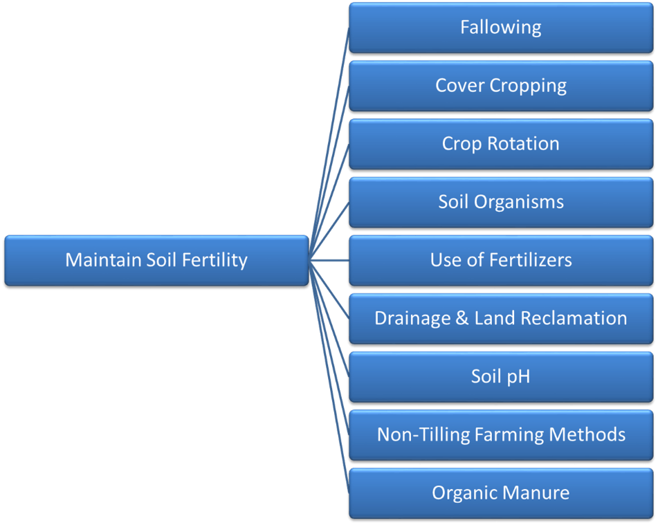 Image of Maintain Soil Fertility