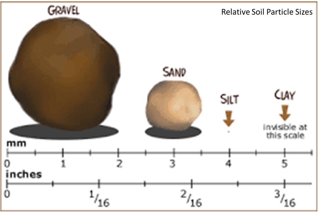 Image of Relative Soil Particle Sizes