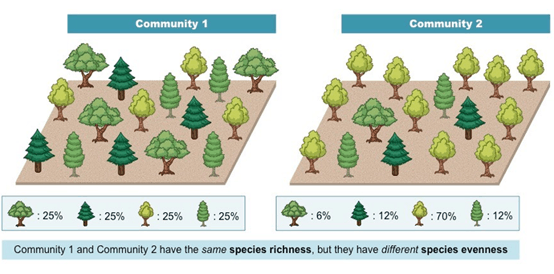 Image of 2 communities For Biodiversity