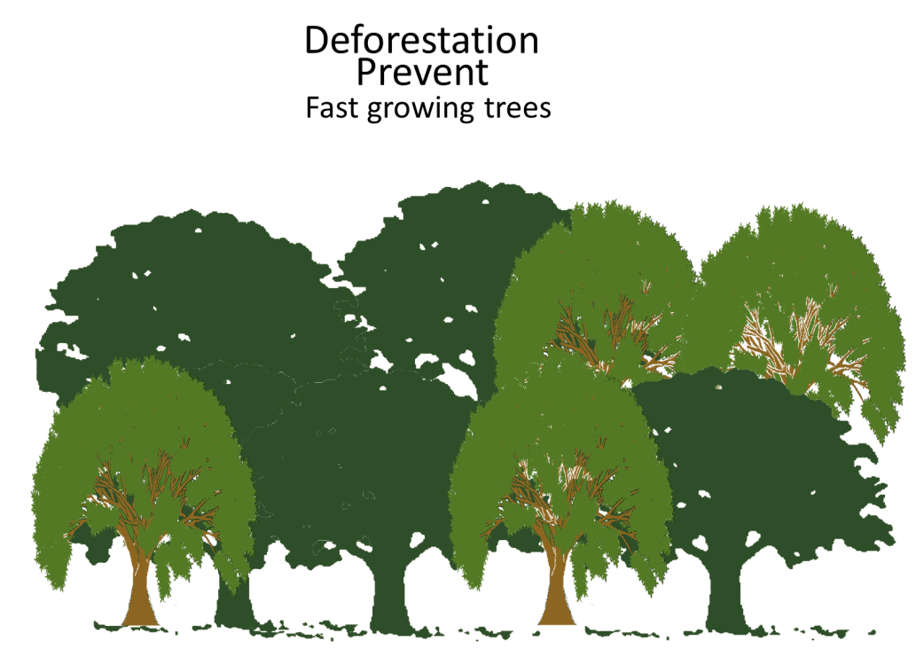 Deforestation Prevent Fast growing trees Image