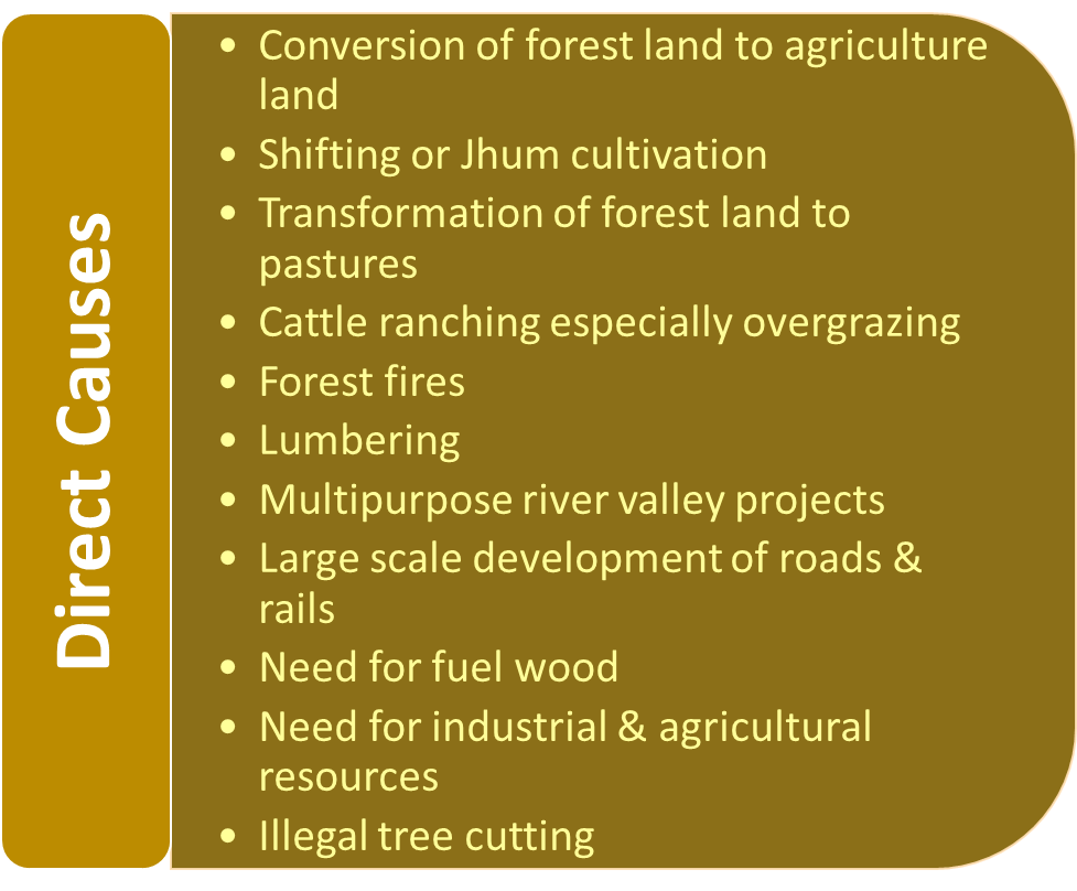 Direct causes of deforestation