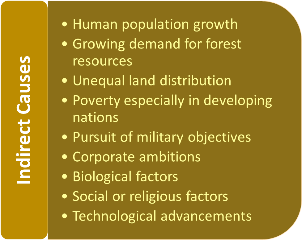 Indirect causes of deforestation