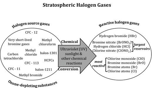 Image of Stratospheric Halogen Gases