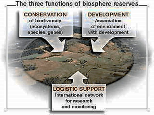 Image of Three Functions of Biosphere Reserves