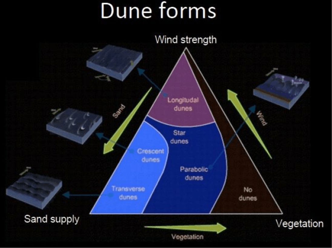 Dune forms Image