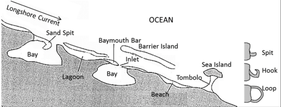 Coastal Depositional Landforms