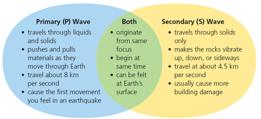 P and S Waves Image