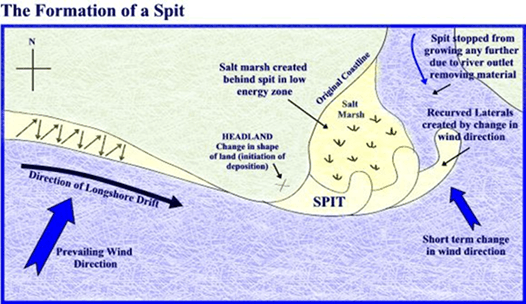 Image of Formation of a Spit