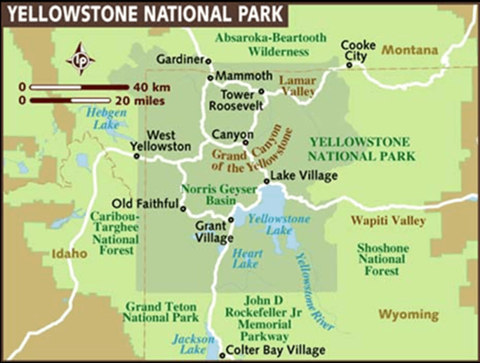 Image of Yellow stone National Park