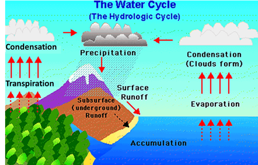 Image of Water Cycle