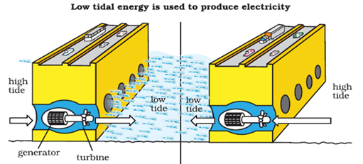 Image of Low Tidal Energy Is Used To Produce Electricity