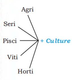 Image of Culture of Agriculture