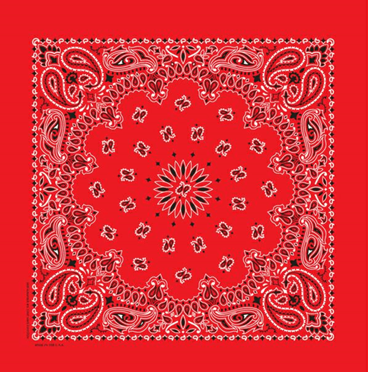 Image of Bandanna
