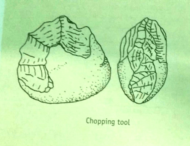 Image of Chopping Tools
