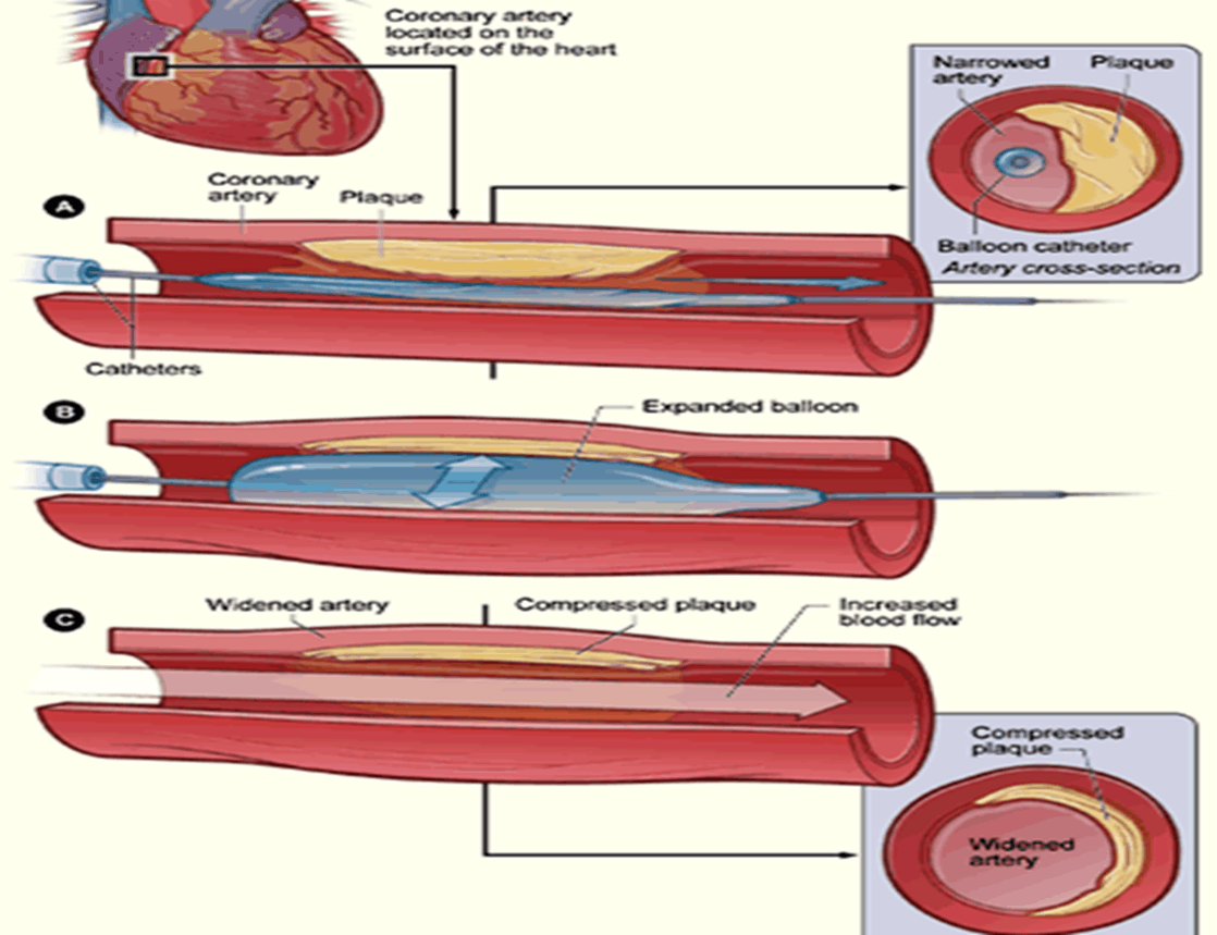 Image of Clinical Procedures