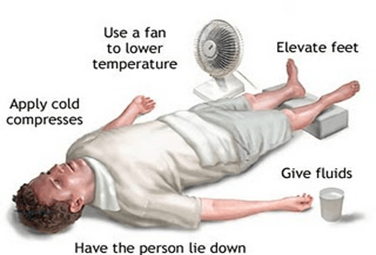 Image of Use A Fan To Lower Temperature