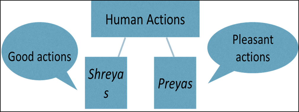 Image of Human Action