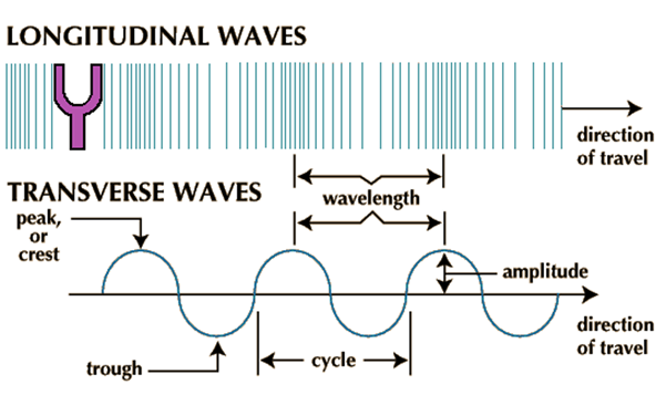 Image of Longitudinal Waves