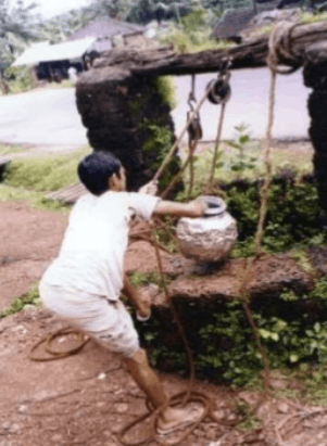 Image of Manual Irrigation Method By Water