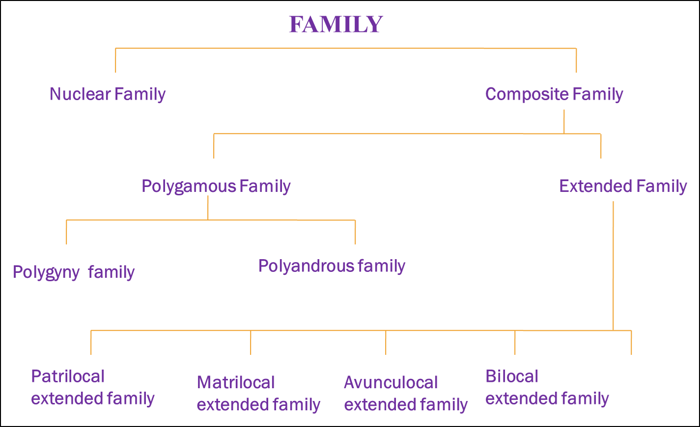 Image of Morgan's evolutionary scheme in family