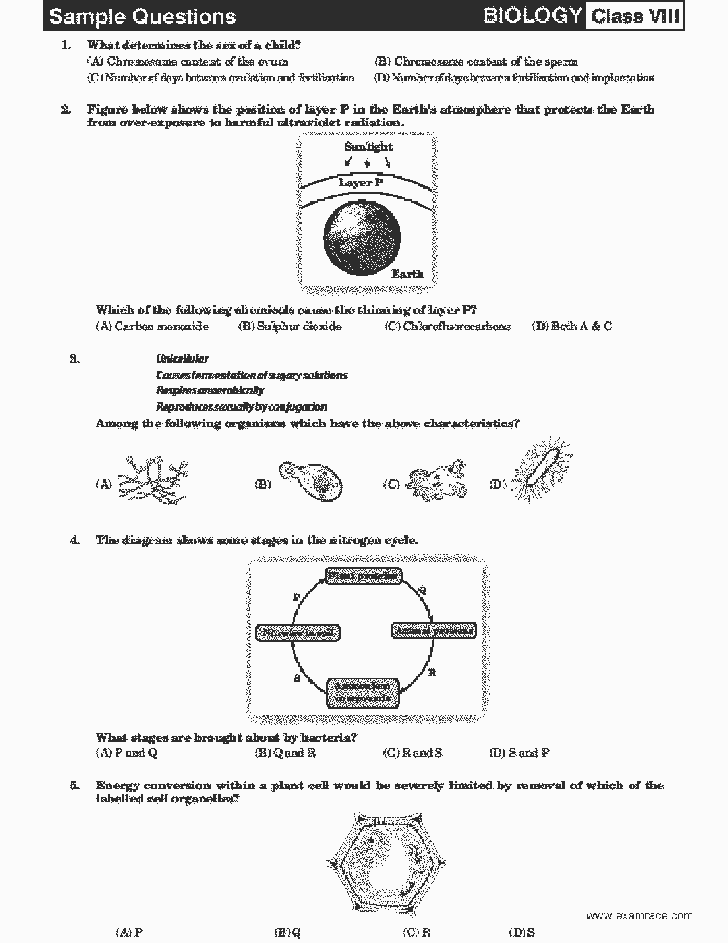 mock test papers for intermediate amateur radio Intermediate french question paper 2007 india monica boyton is my favourite teacher hamtests welcome intermediate exam papers for amateur radio.