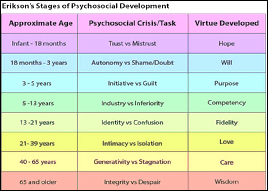 The stages of Erikson's psychosocial development