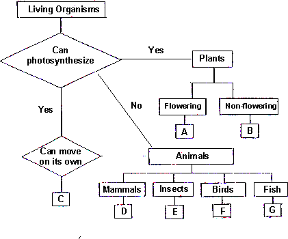 Figure shows classification chart of living organisms