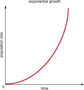 Graph shows exponential growth