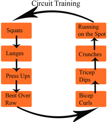 Image of Circuit Training