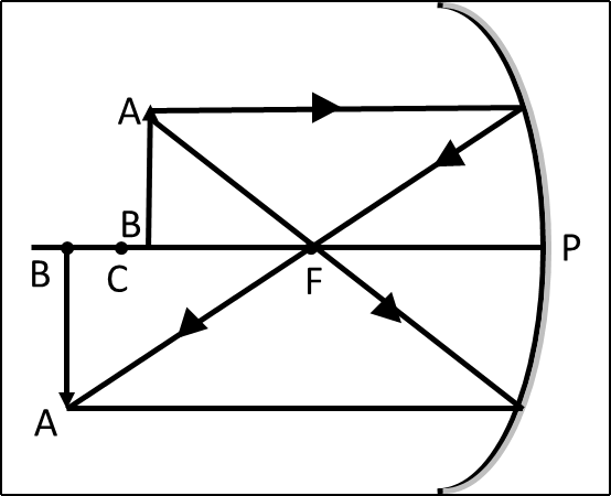Draw ray diagram to show formation of magnified