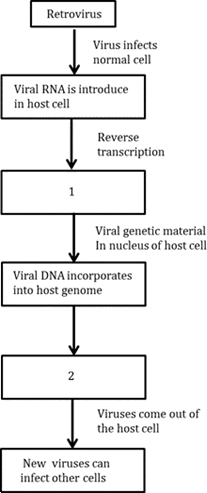 Chapter-8- Question -6- Image of Flow Chart