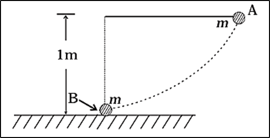 Bob pendulum released horizontal to the vertical