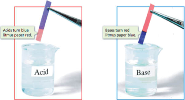 Image litmus paper in acid and base