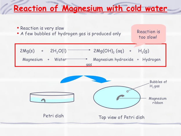 Image reaction of magnesium with cold water