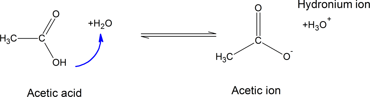 Image Carboxylic acids are partially ionized