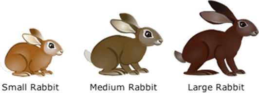 Image the variation in rabbit