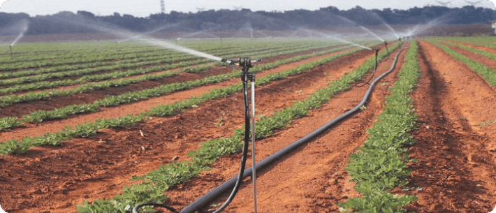 Image of irrigating a crop field