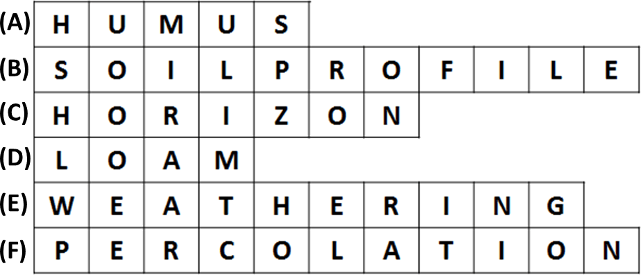 As showing in images is a Unscramble the following jumbled words related to soil.(A)